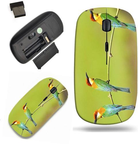 Liili Wireless Mouse Travel 2.4G Wireless Mice with USB Rece